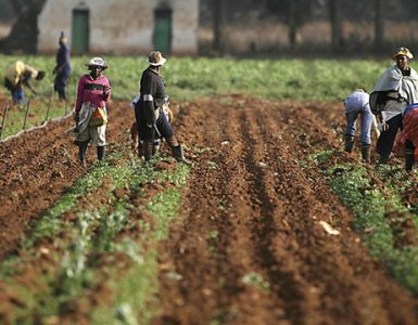 Kenya Land Reform and Rural Transformation Overview