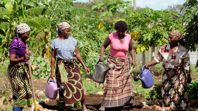Mozambique Land Reform and Rural Transformation Overview