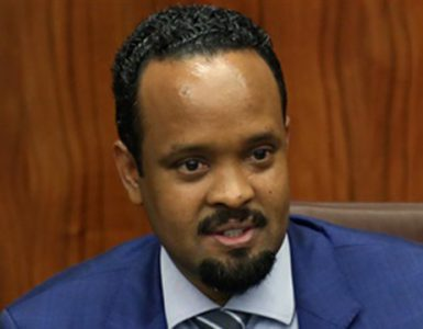GDP Growth and Public Finance in Ethiopia: FY2019/20